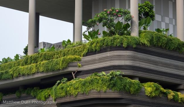 Terrace 1 85mm, ISO 100, f/5.6, 1/250