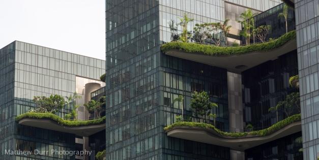 Terrace 2 85mm, ISO 100, f/5.6, 1/320