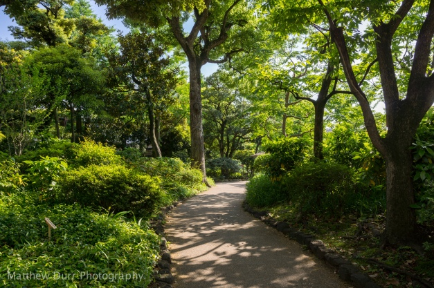 Garden Path 16mm, ISO 100, f/5.6, 1/250
