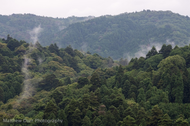 Misty Mountains 105mm, ISO 100, f/5.6, 1/200