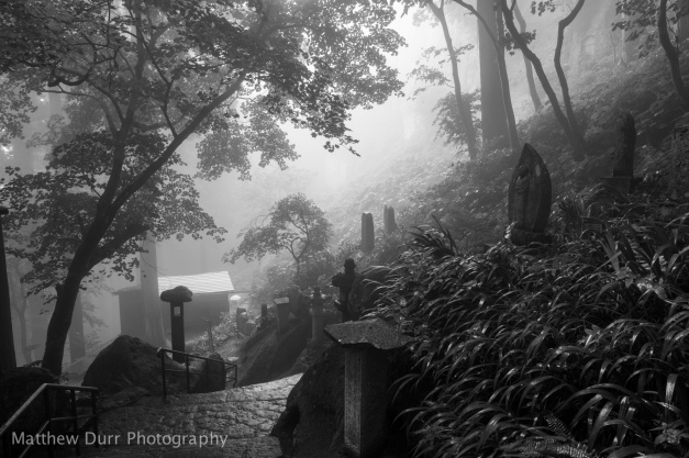 Spooky 16mm, ISO 100, f/5.6, 1/15