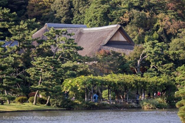 Kakushokaku (Sankei's old home) and Wisteria Trellis 105mm, ISO 100, T3.2, 1/250
