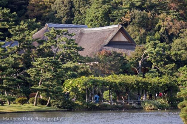 Kakushokaku (Sankei's old home) and Wisteria Trellis 105mm, ISO 100, T3.2, 1/250