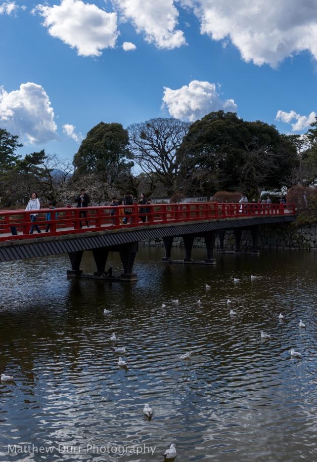 Exit Bridge 32mm, ISO 100, f/5.6, 1/2500, 6 images stitched
